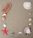 Beach sand and shells framed with sea creachers Royalty Free Stock Images