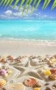 Beach sand starfish print caribbean tropical sea Royalty Free Stock Photo