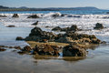California Beach Scene with Gull Standing on Rocks Royalty Free Stock Photo