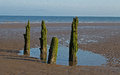 Beach scene near silloth cumbria lake district wooden posts england coast of scotland in the distance Stock Photo
