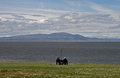 Beach scene near silloth cumbria lake district wooden posts england coast of scotland in the distance Royalty Free Stock Photos