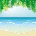 Beach sea waves and palm leaves Royalty Free Stock Photos