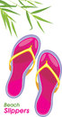 Beach slippers isolated on the white illustration Royalty Free Stock Photos
