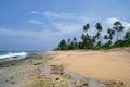 Beach on sri lanka coast wild Stock Photos