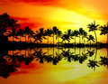 Beach sunset or sunrise with tropical palm trees Royalty Free Stock Photo
