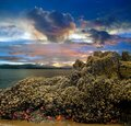 Beach Sunset Tide pool Cloudy Sky Royalty Free Stock Photo