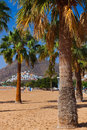 Beach teresitas in tenerife canary islands spain Stock Image