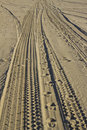 Beach tracks Royalty Free Stock Photography