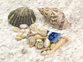 Beach treasures Stock Photos