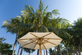 Beach umbrella On background of palm trees Stock Images