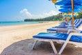Beach umbrellas and sunbathe seats on Phuket sand beach Royalty Free Stock Photo