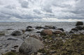 Beach wavy Baltic Sea with boulders Royalty Free Stock Photo