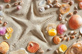 Beach white sand starfish print many clam shells Royalty Free Stock Photo