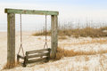 The beachfront swing on tybee island georgia many swings have become a landmark of area Stock Image