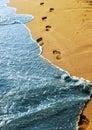 Beachwalk Royalty Free Stock Photo