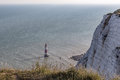 Beachy Head chalk cliff with lighthouse and shadow and long gras Royalty Free Stock Photo