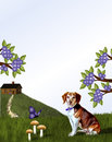 Beagle and cabin on hill brown white dog sitting in grass wood grassy with path leading down the side in background a purple Stock Photo