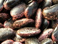 Bean background Royalty Free Stock Photo