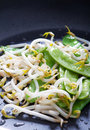 Bean sprout and pea Royalty Free Stock Photos
