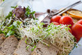 Bean sprouts with pate close up Stock Images