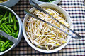 Bean sprouts in the white bowl Royalty Free Stock Photo