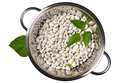 Beans in a colander white with green leaves isolated on white background top view Royalty Free Stock Image