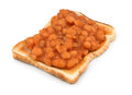 Beans on toast baked a popular lunchtime snack isolated against a white background Royalty Free Stock Photos
