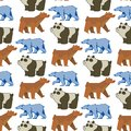 Bear animal vector mammal teddy grizzly funny happy cartoon predator cute character seamless pattern background