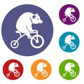 Bear on a bike icons set