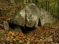 Bear den in carpathian a ursus arctos mountains romani vrancea placed under a big stone of sandstone Stock Photography