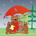 Bear family umbrella with cubs hiding under an from the rain Stock Photo