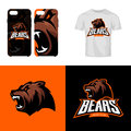 Bear head sport club isolated vector logo concept.