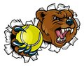 Bear Holding Tennis Ball Breaking Background Royalty Free Stock Photo