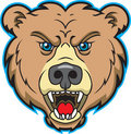 Bear Mascot Logo Royalty Free Stock Images