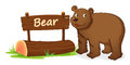 Bear and name plate Stock Image