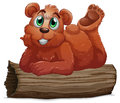 A bear resting above the log illustration of on white background Royalty Free Stock Images