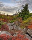 Bear rocks dolly sods west virginia in Royalty Free Stock Photography