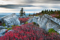 Bear rocks preserve dolly sods wilderness area west virginia autumn paints in s with beautiful ruby red hues Stock Photography