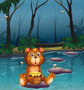 A bear sitting on a stone holding a pot of honey Royalty Free Stock Photo