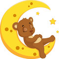 The bear sleep on the moon