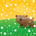 Bear and snow in the forest Stock Photos