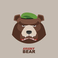 Bear soldier in a green beret. Angry animal Royalty Free Stock Photo