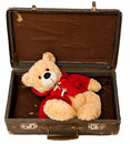 Bear in suitcase Royalty Free Stock Photography