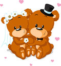 Bear wedding bears isolated on white background Stock Image
