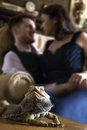 Bearded dragon pet and owners reptile posing with affectionate Stock Image