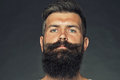 Bearded grey haired man with moustache portrait closeup of one handsome sensual unshaven tanned long beard and model looking Royalty Free Stock Photo