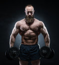 Bearded Muscular Bodybuilder P...