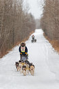 Beargrease marathon ryan anderson on trail two harbors mn january s team leads a team down the during the portion of the john sled Stock Photos