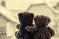 Bears in love s embrace sitting in front of a window Royalty Free Stock Photo