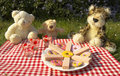 Bears picnic Royalty Free Stock Image